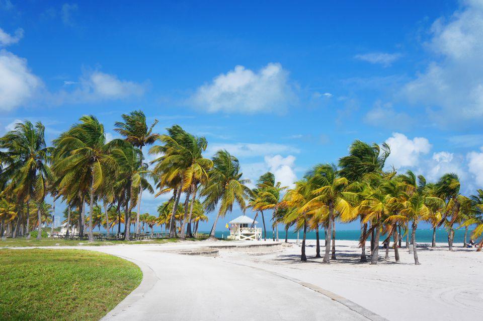 Boardwalk in the Crandon park Beach, Miami