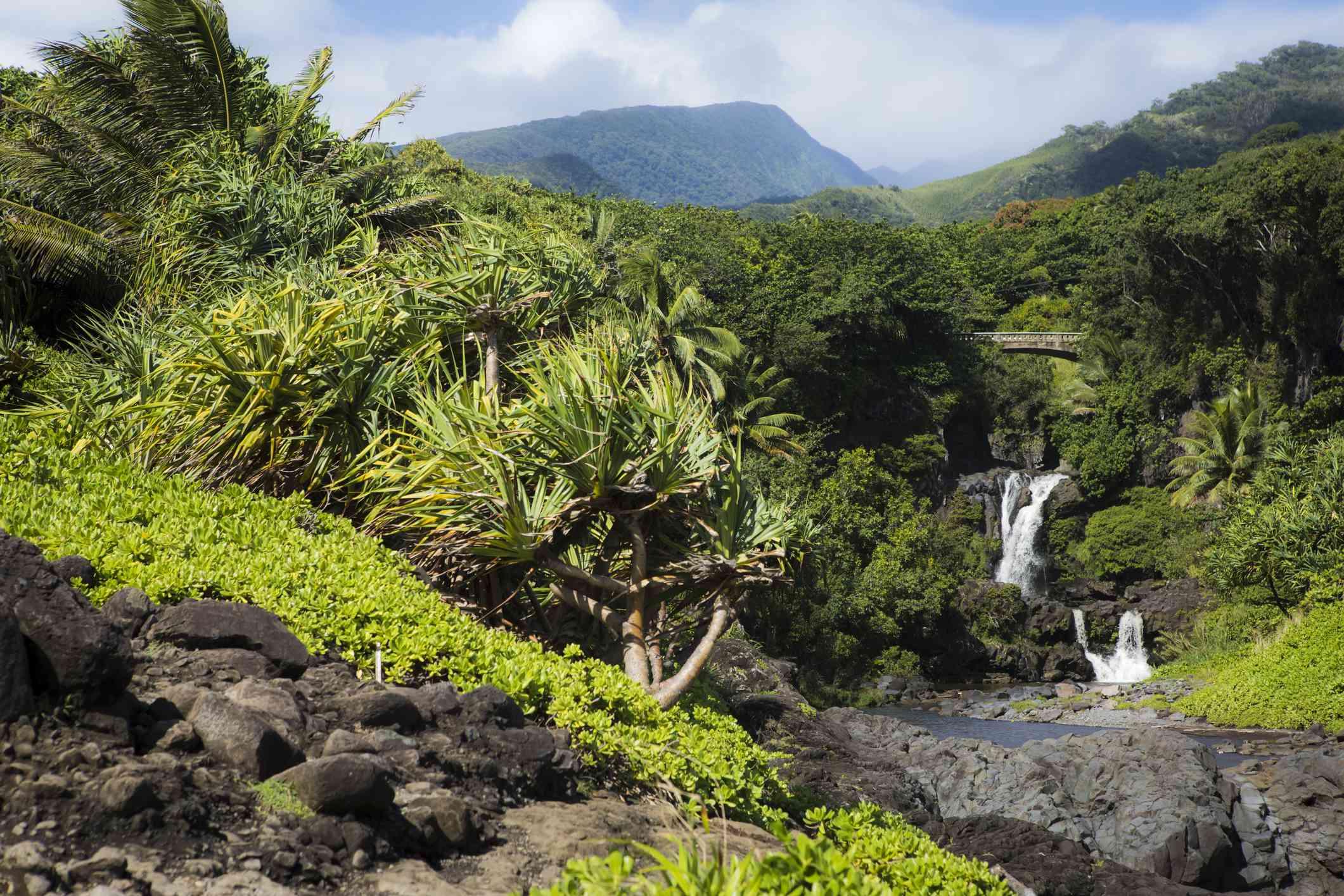'Ohe'o Gulch on Maui