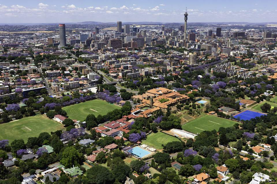 Cityscape with flowering jacarandas in Johannesburg, South Africa
