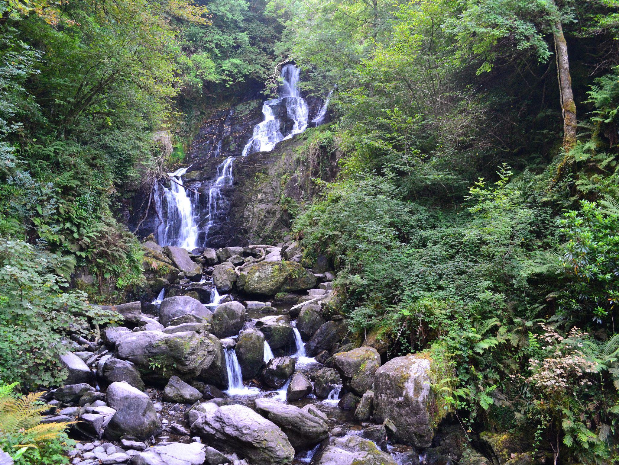 cascada en los bosques de Irlanda