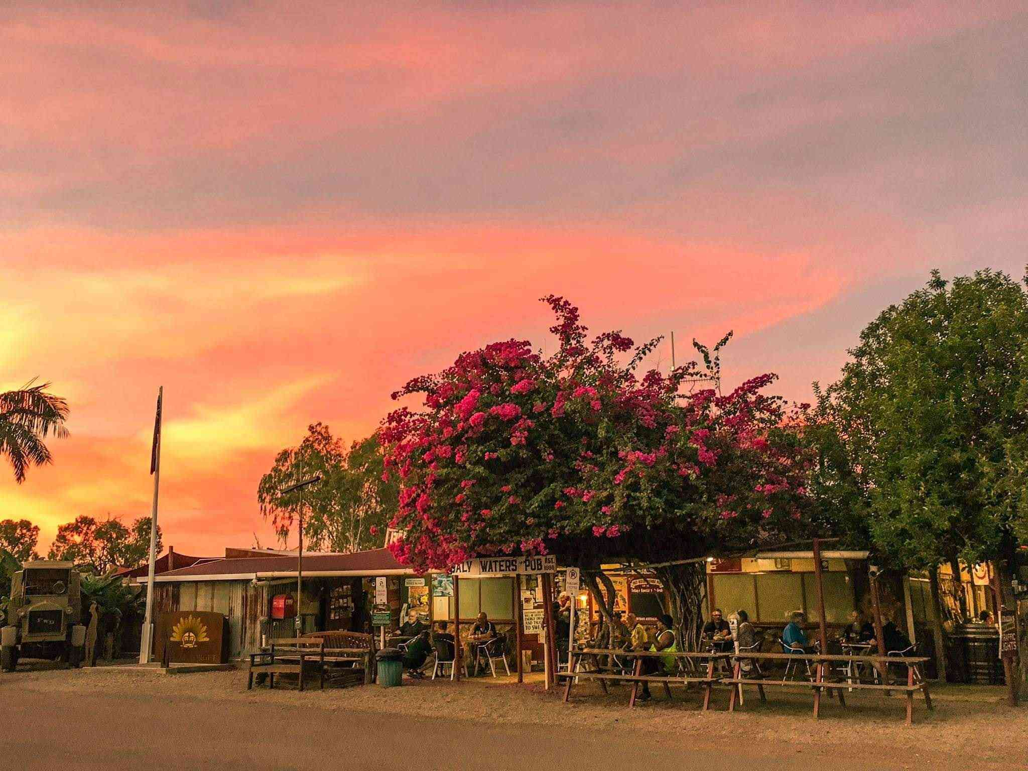 Sunset behind Daly Waters pub with pink flowers