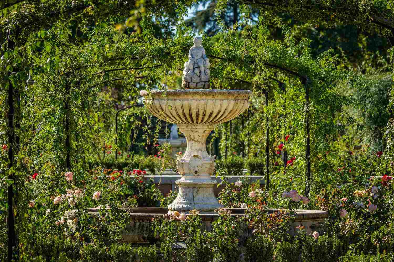 Rose garden Retiro Park Madrid