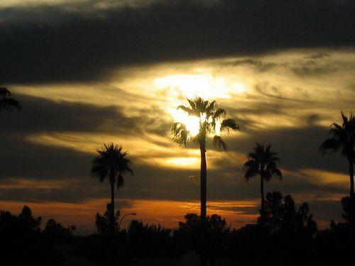 Arizona Sunset: Chandler
