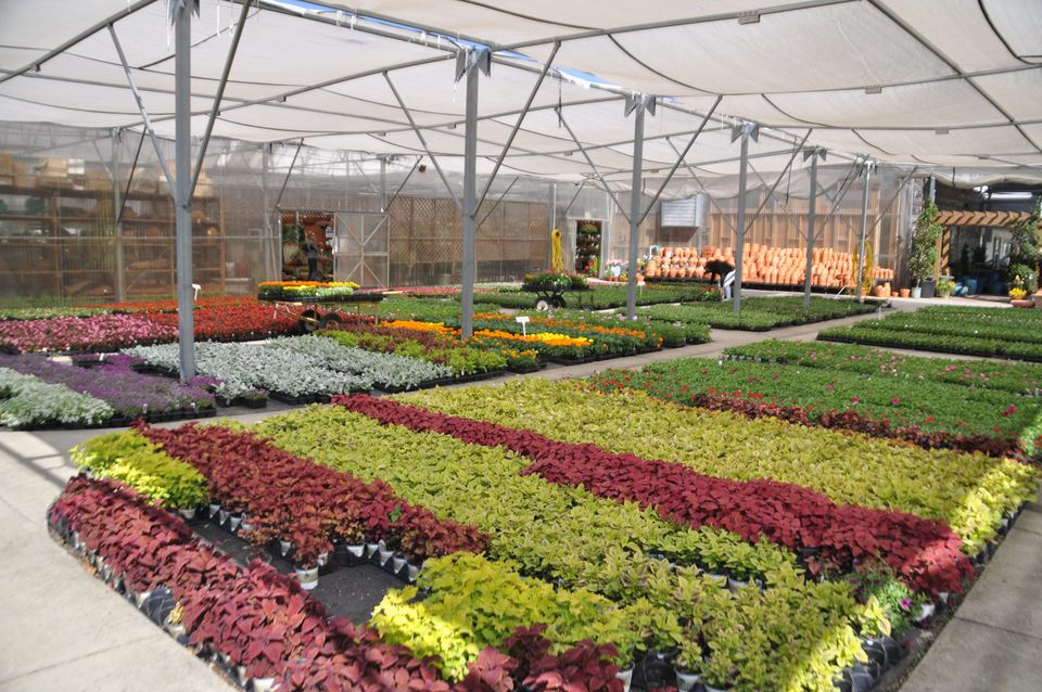 Rountree Plantation Garden Center Nursery In Charlotte