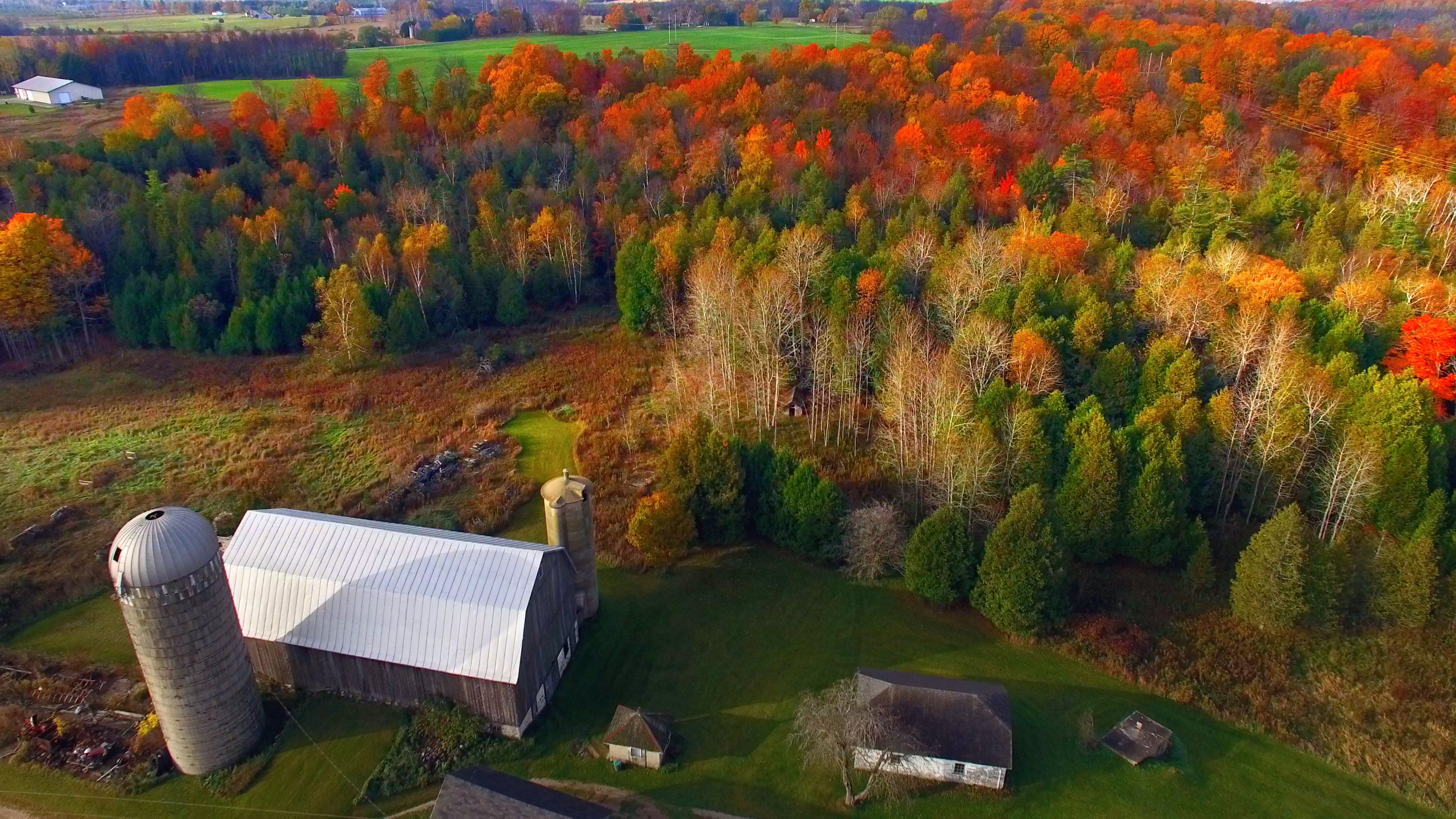Amazingly Fiery Colors of Wisconsin Autumn Forests