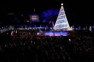 2017 National Christmas Tree