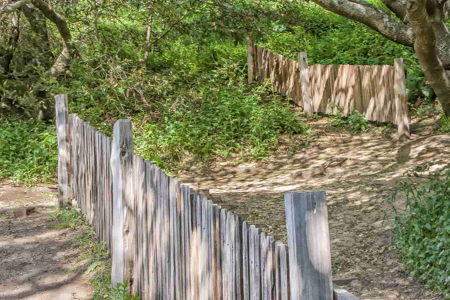San Andreas Fault Splits a Fence at Point Reyes