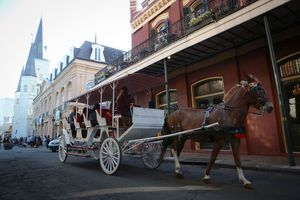 People ride a horse-drawn carriage in the historic French Quarter, the first neighborhood of New Orleans