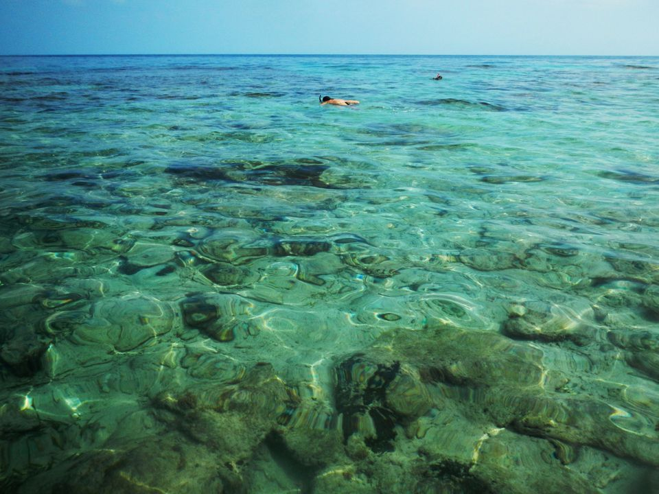 People snorkeling on Utila Island