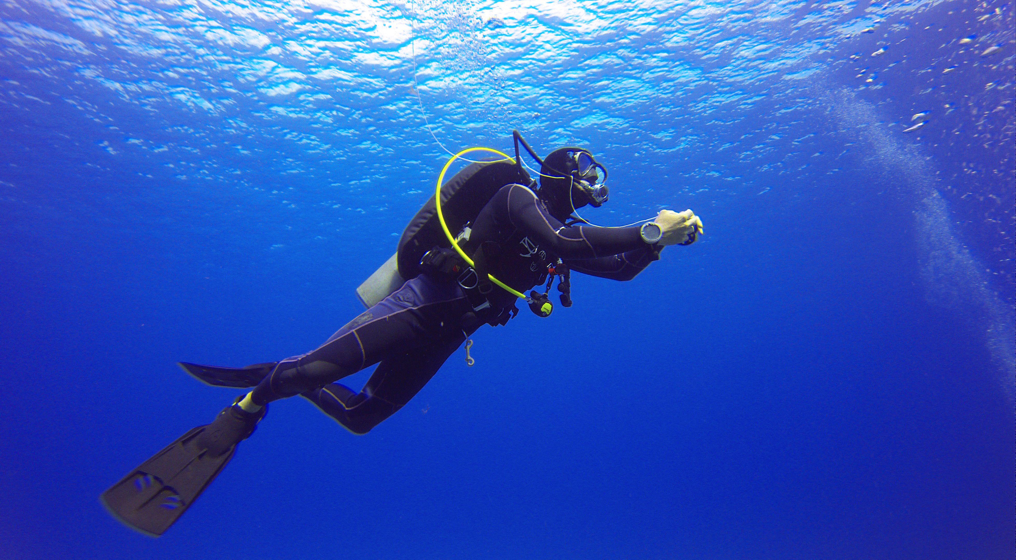 Scuba diver near the surface.