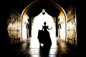 DisneyWorld Cinderella