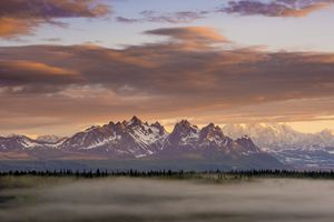 A thin layer of fog blanketed over evergreens with mountains in the background at sunset. Denali National Park, Alaska, USA.