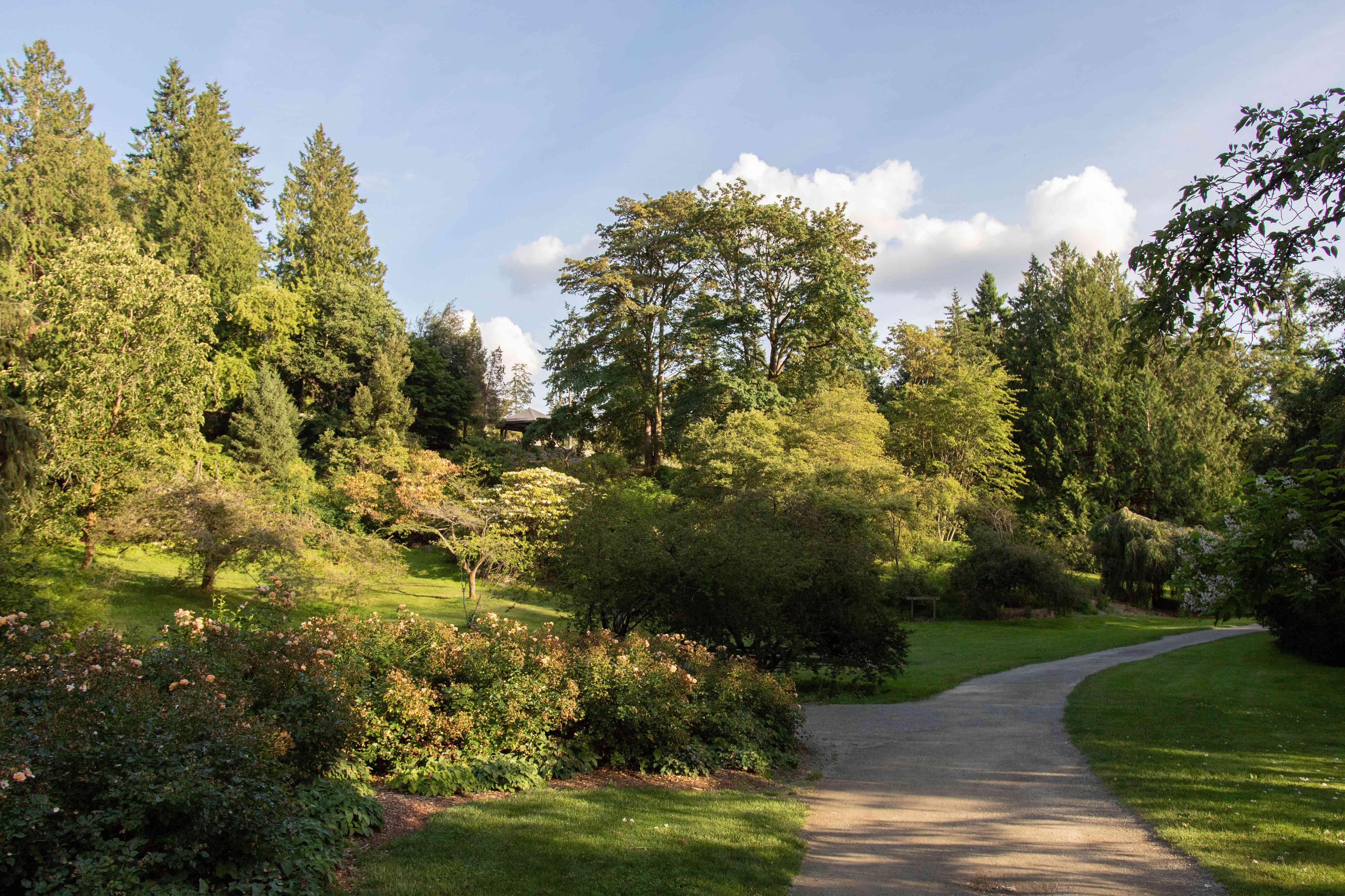 Washington Park Arboretum in Seattle