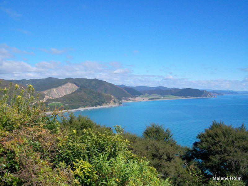 Pacific Coastline, Opape, East Cape