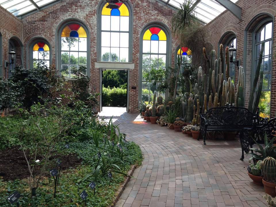 inside the linnean house at missouri botanical garden - Missouri Botanical Garden Hours