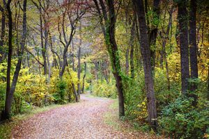 Around the Bend in Fall at Southard's Pond, Babylon, Long Island