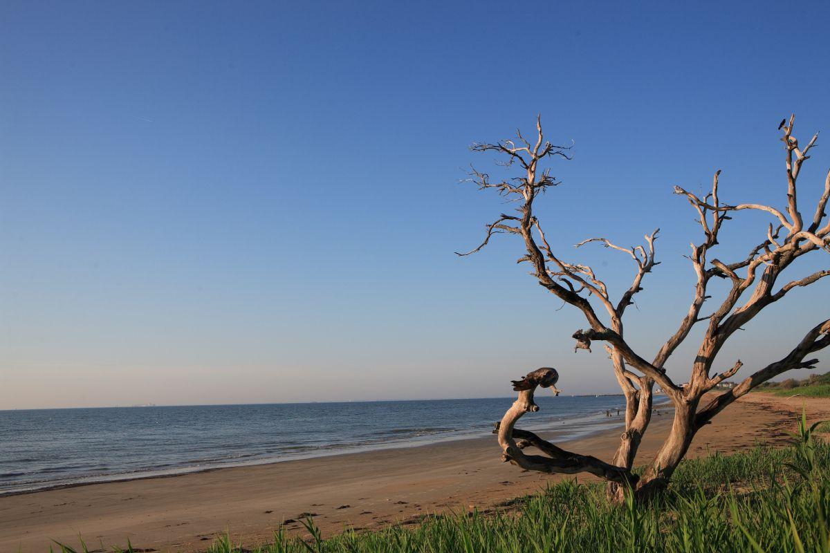 Grandview Nature Preserve