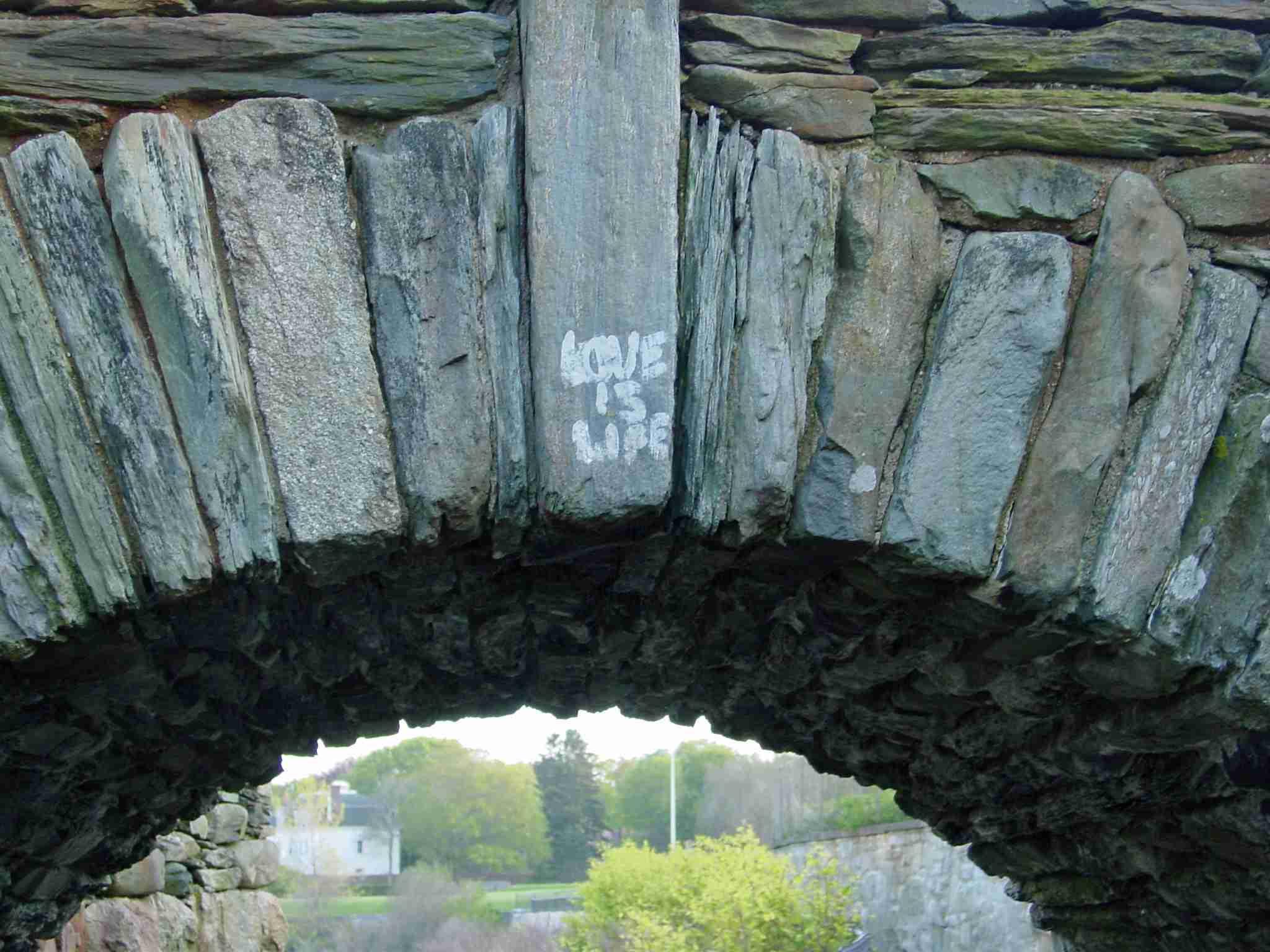 Newport Cliff Walk Graffiti