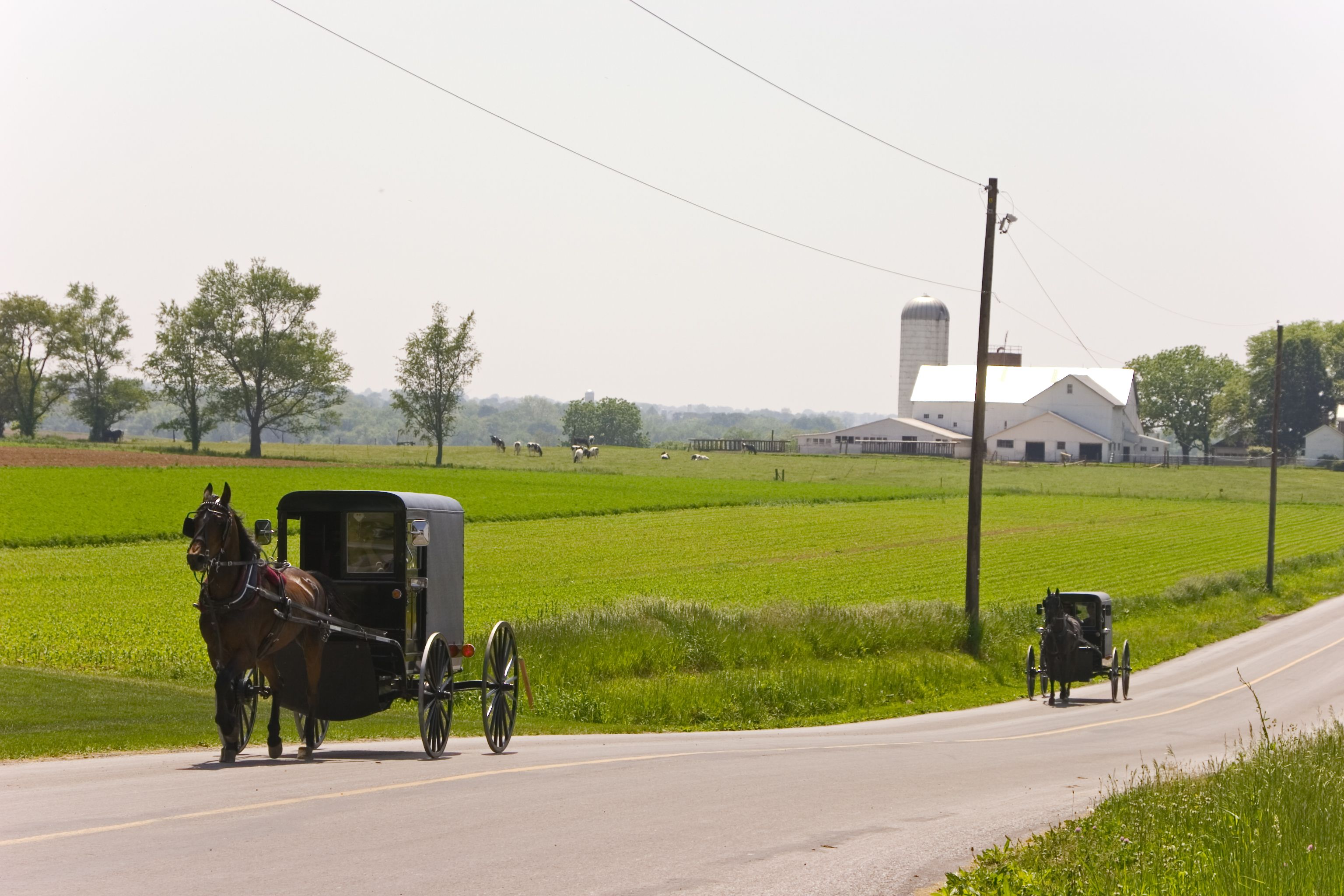 Amish Communities In Usa Map.History Of The Amish Settlements And Orders In America