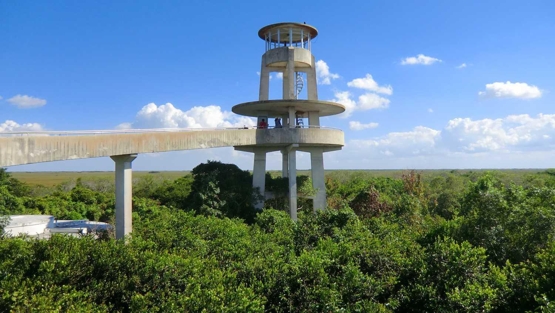 Torre de observación Shark Valley