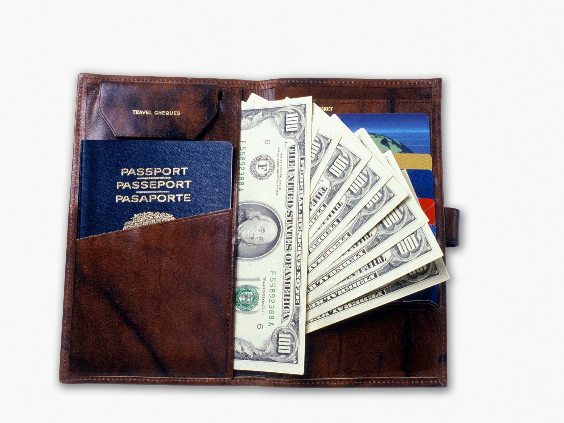 d356127b62ba The 10 Best Passport Holders of 2019