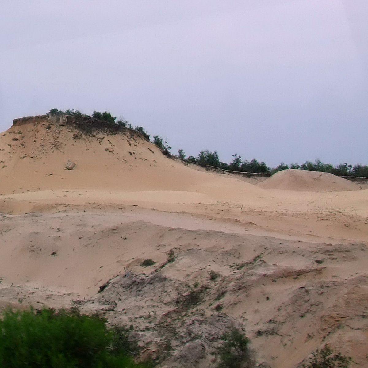 Vietnam Beach Sand Dune