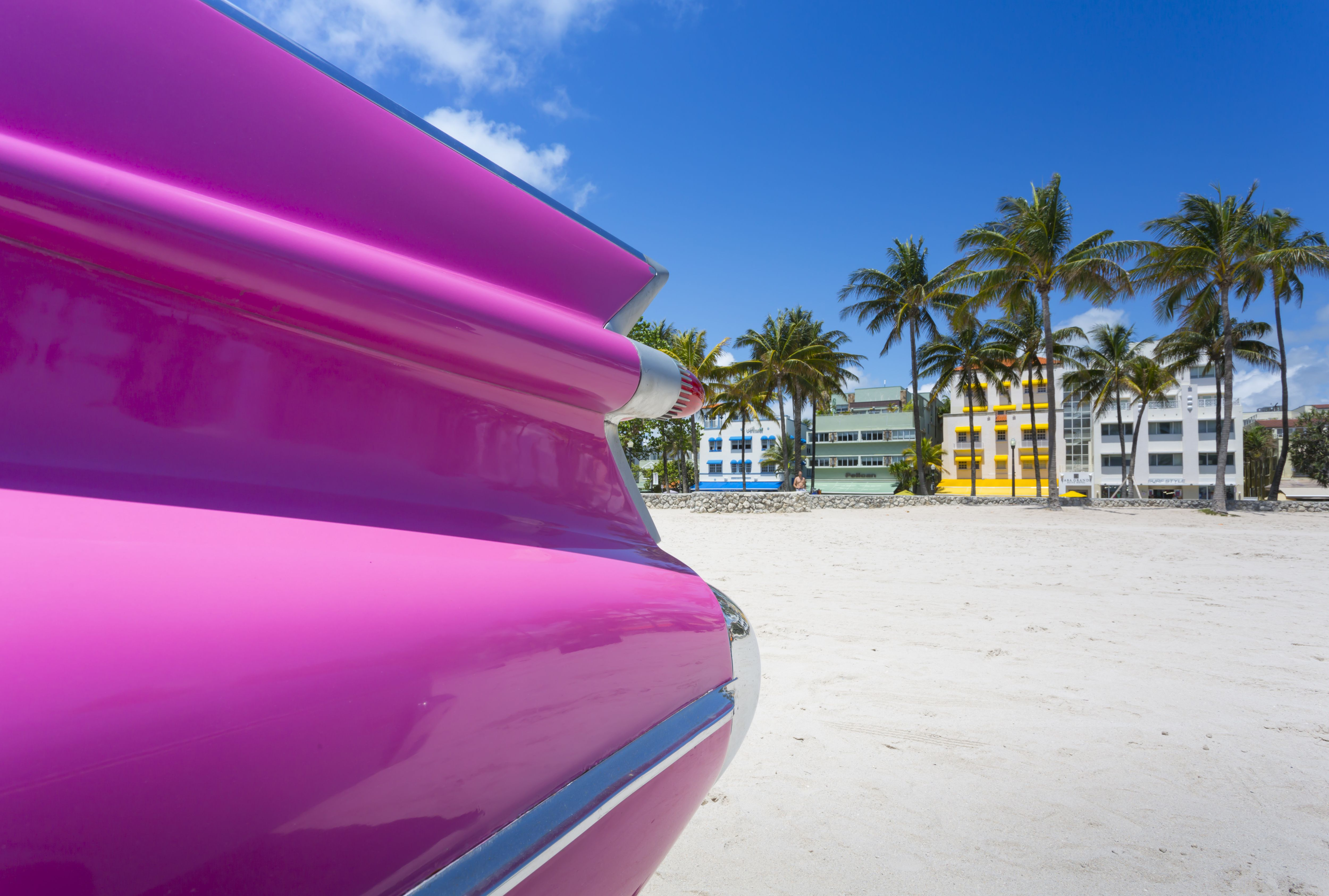 Your Trip to Miami: The Complete Guide