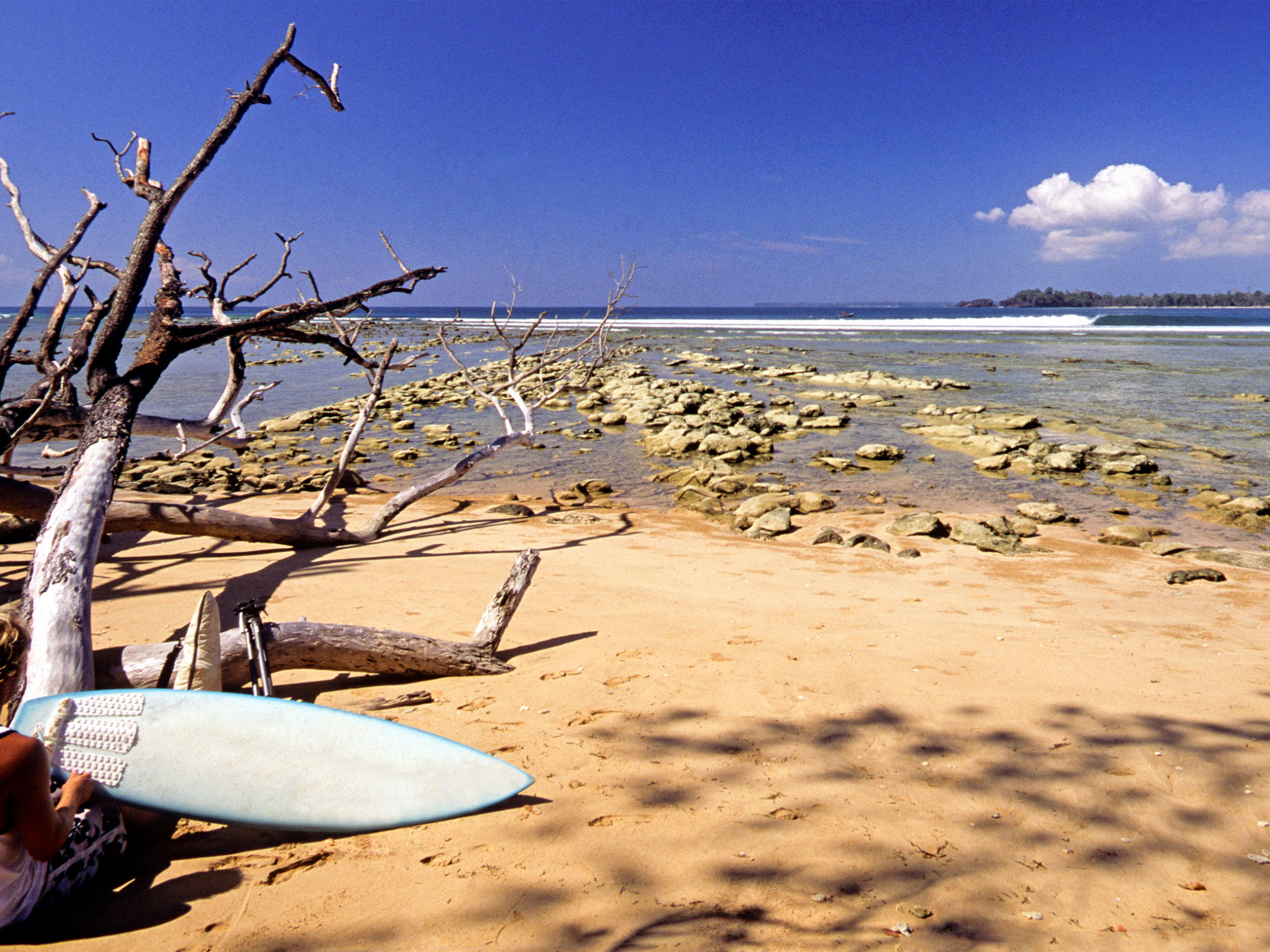 Surfing in India: 9 Top Places to Surf and Get Lessons