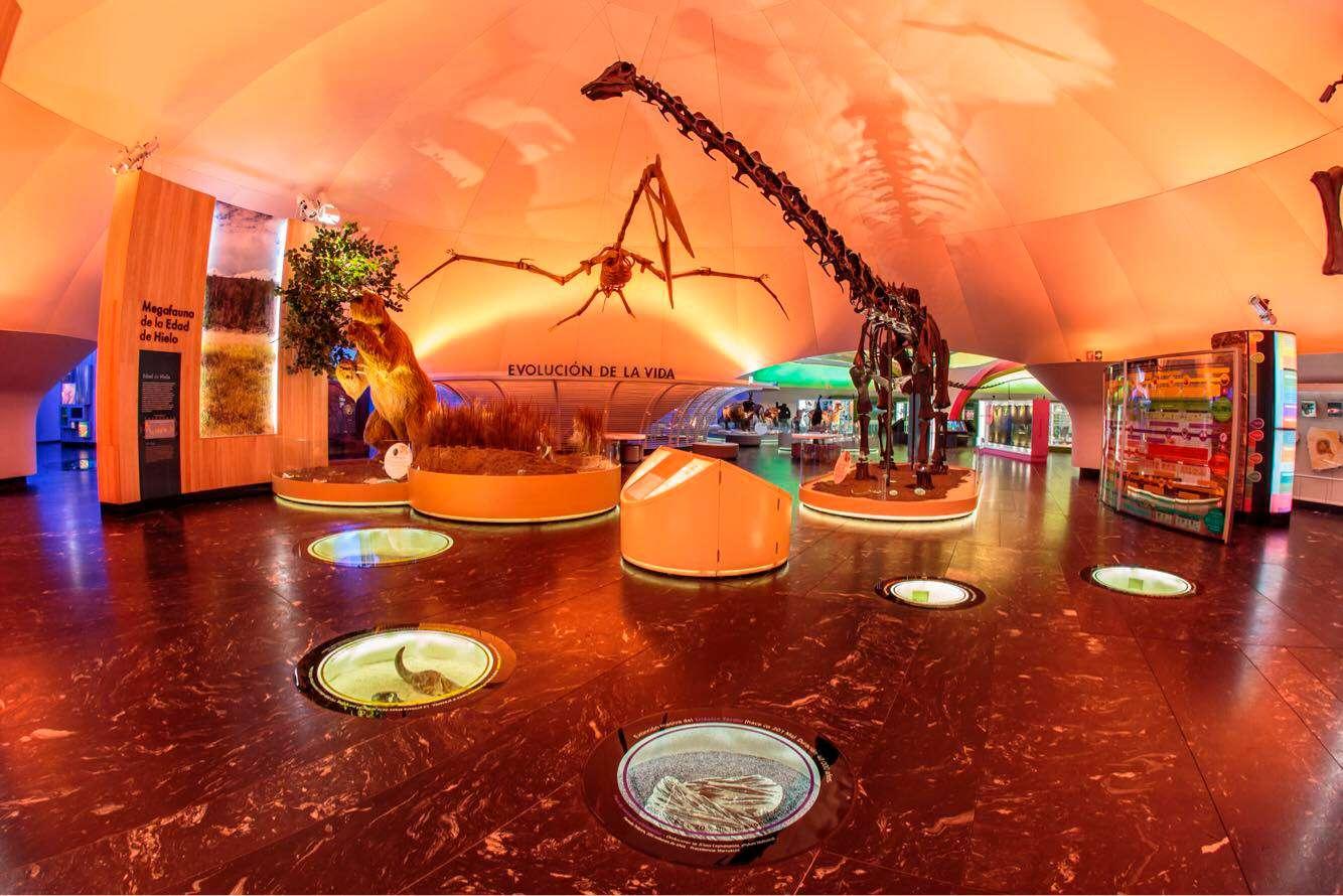 Museo de Historia Natural Chapultepec