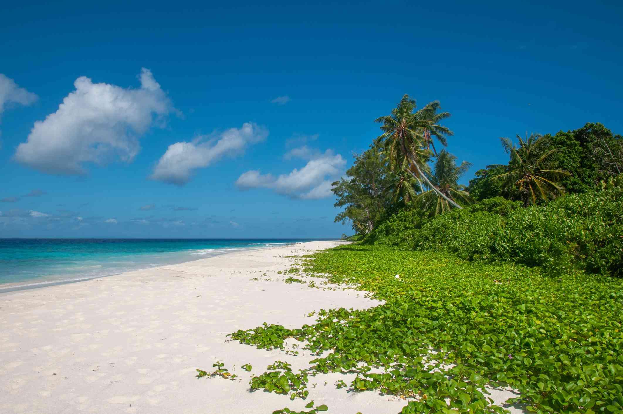 Tropical beach in Aride Island
