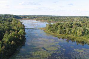 Brighton Recreation Area in Michigan