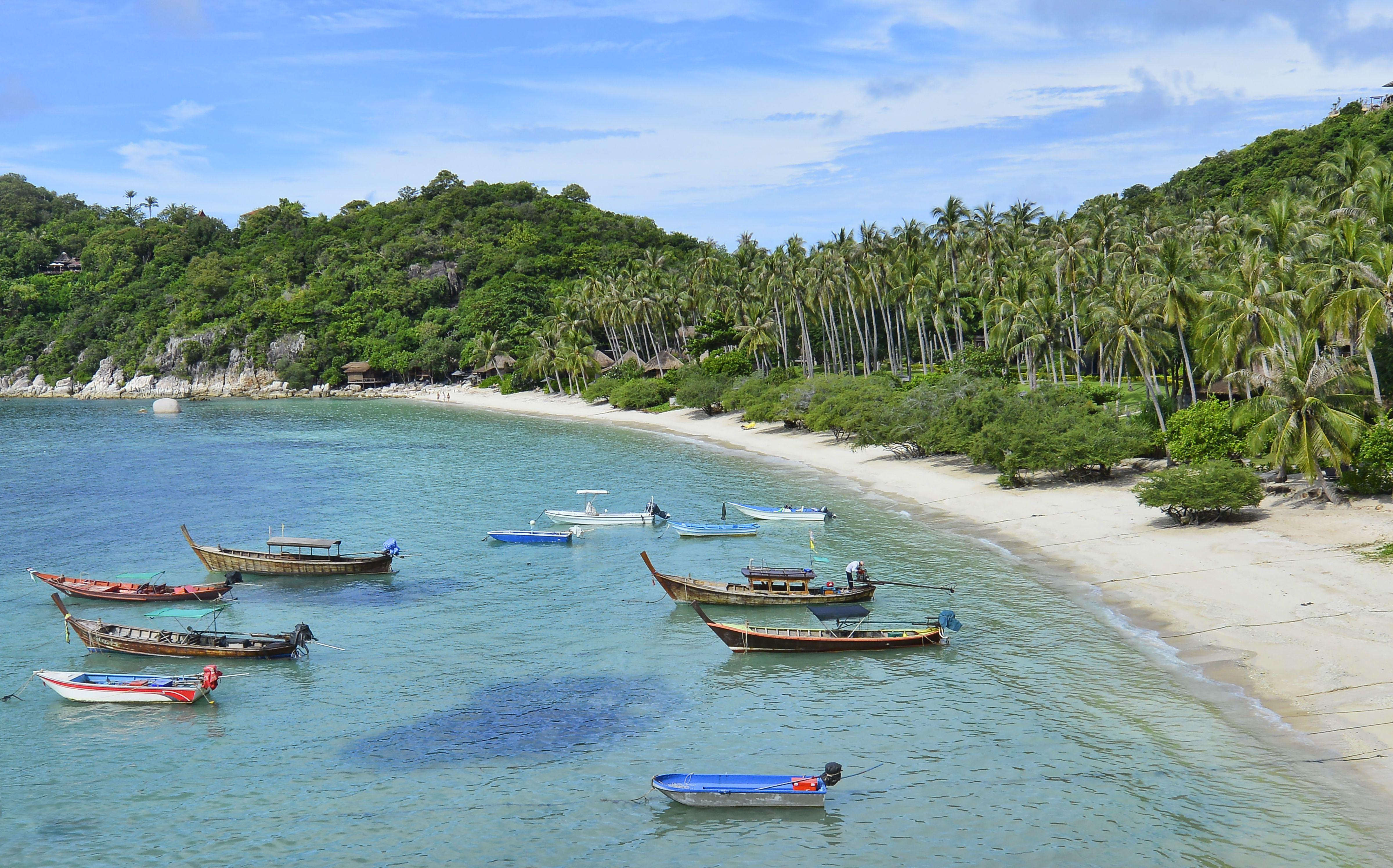 Una playa y barcos de cola larga en Koh Tao, Tailandia