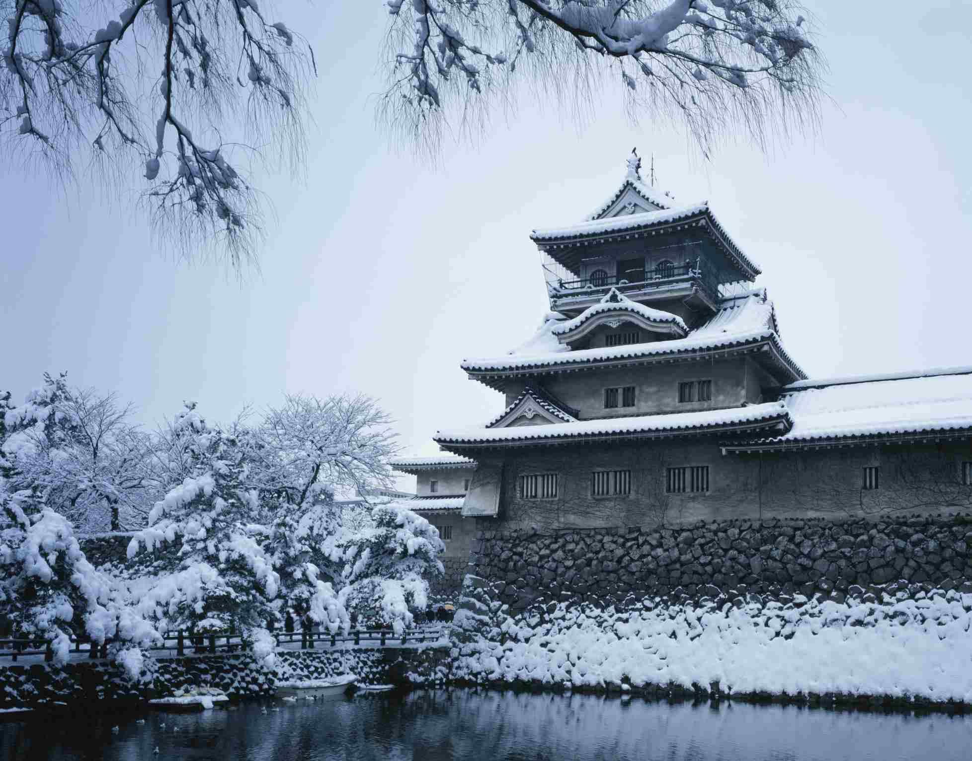 Japan, Toyama Prefecture, Toyama Castle, Snow covered trees near castle