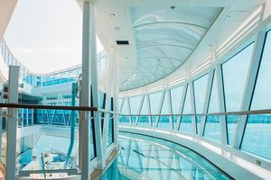 SeaWalk on the Royal Princess cruise ship