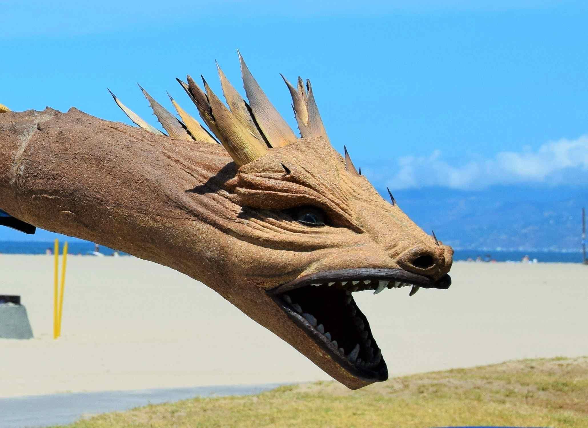 Dragon Head of Australian Didgeridoo