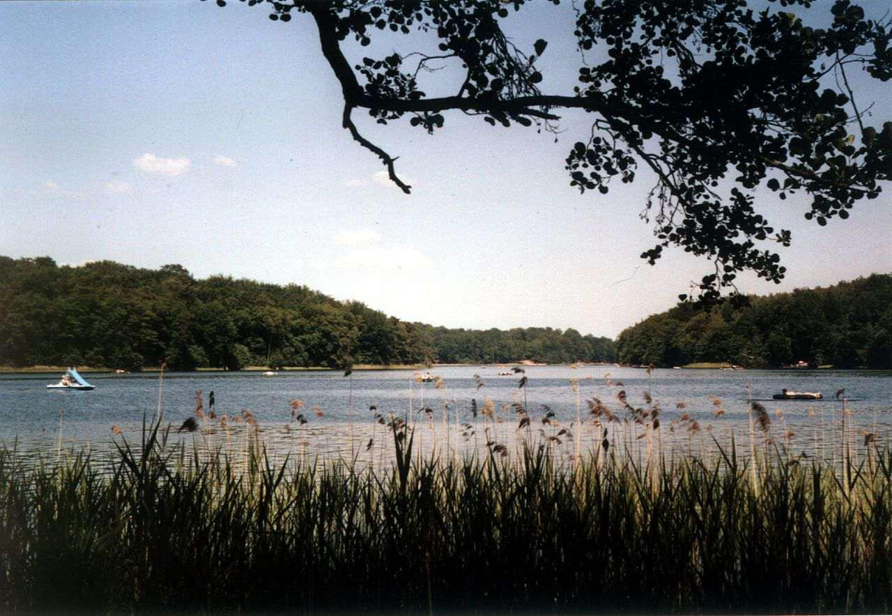 Der Liepnitzsee
