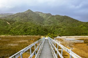 A walk path to a grass covered mountain in Abel Tasman