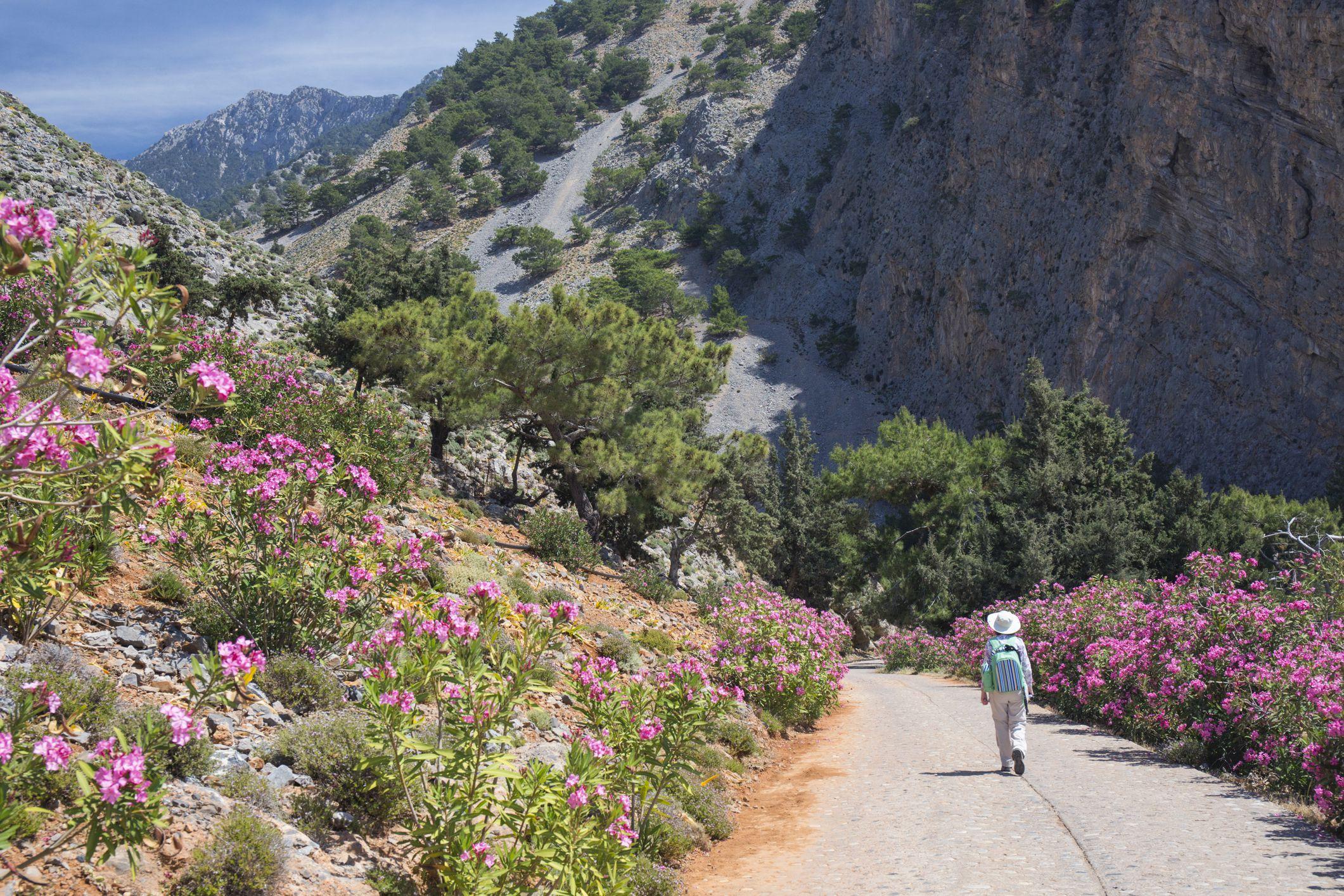 Entering the Samaria Gorge, Agia Roumeli, Crete