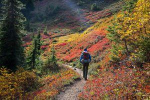 Hiker enjoying the fall colors