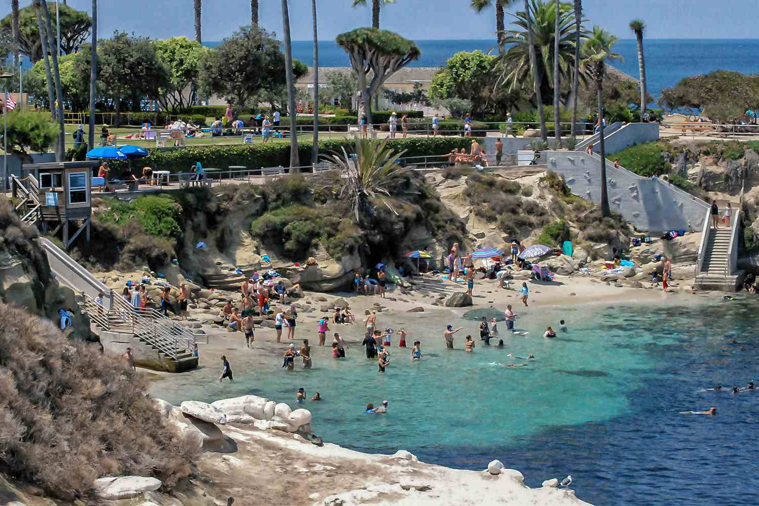 Image result for wish to move to san diego la jolla