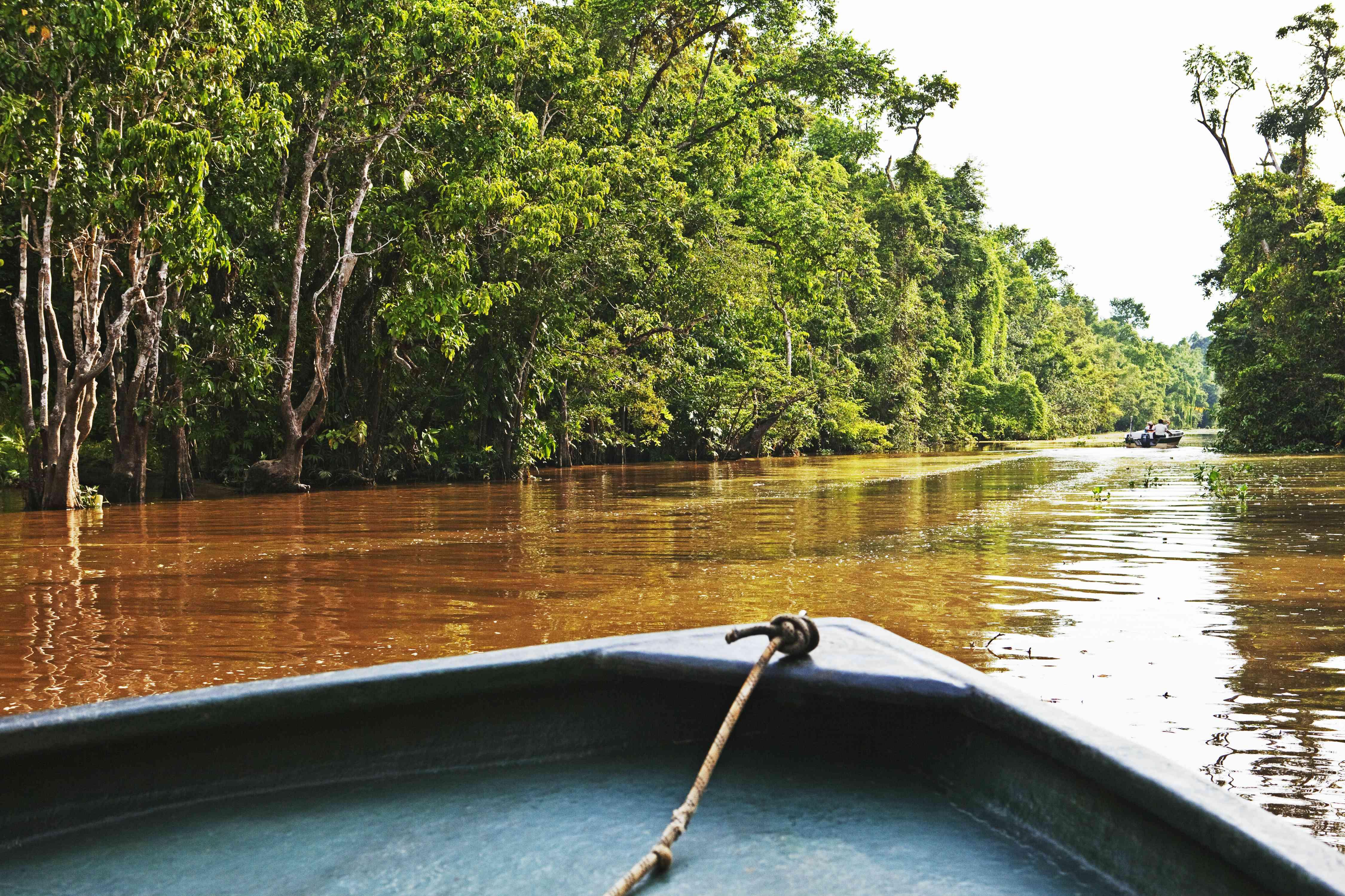 A boat on the muddy Kinabatangan River in Sabah, Borneo
