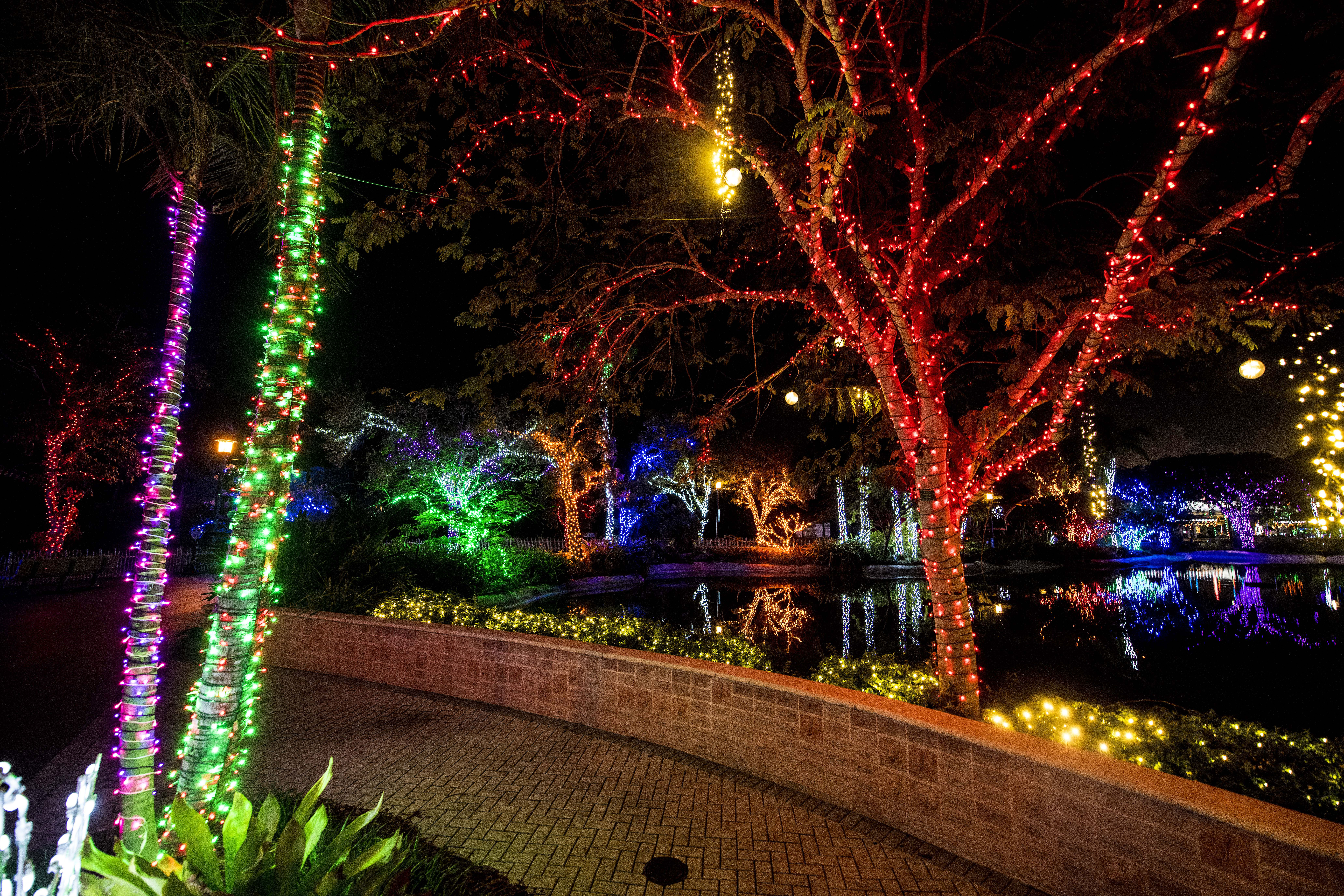 Things to Do for Christmas in Miami