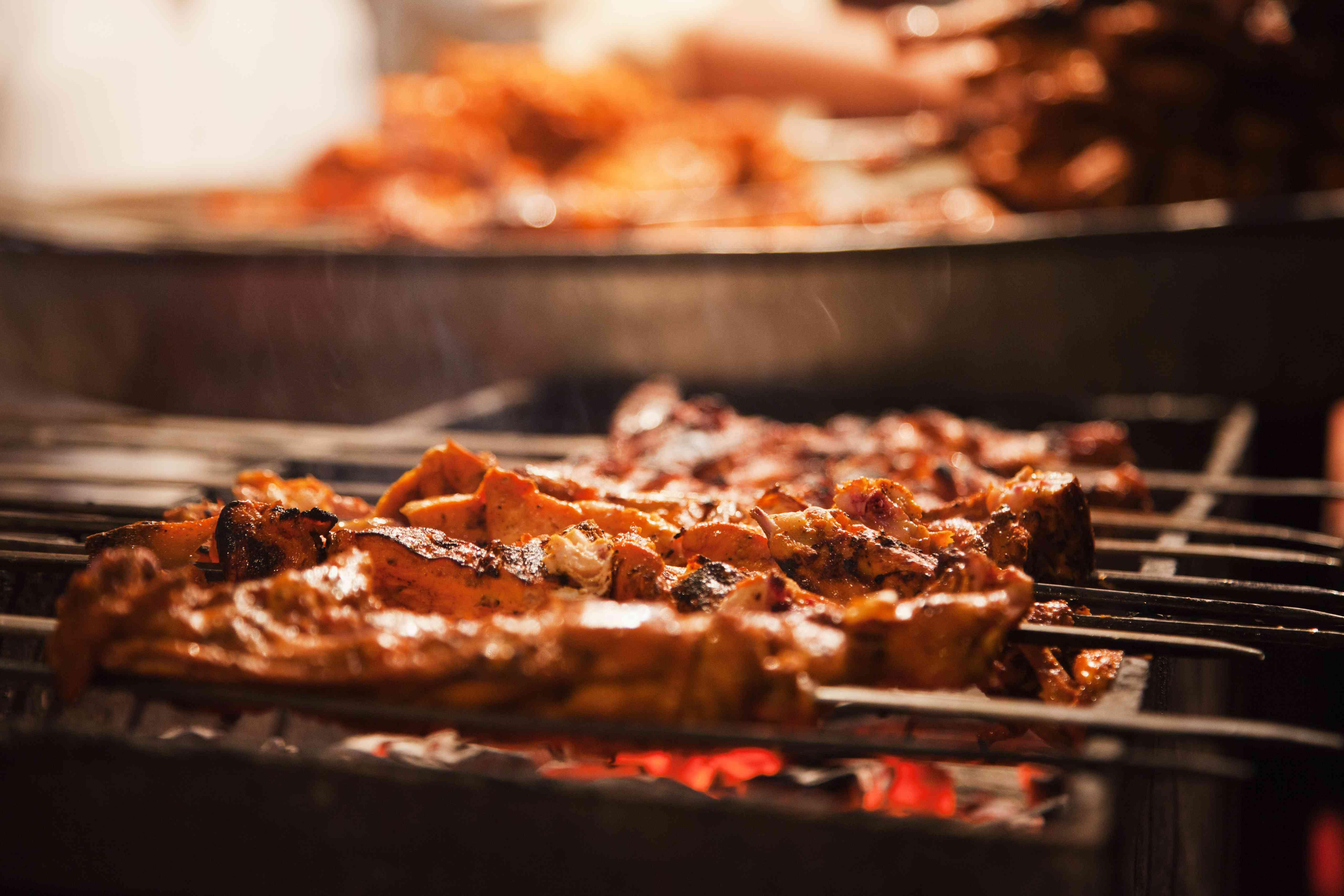Close-up of kebabs, Chandni Chowk, Old Delhi, Delhi, India