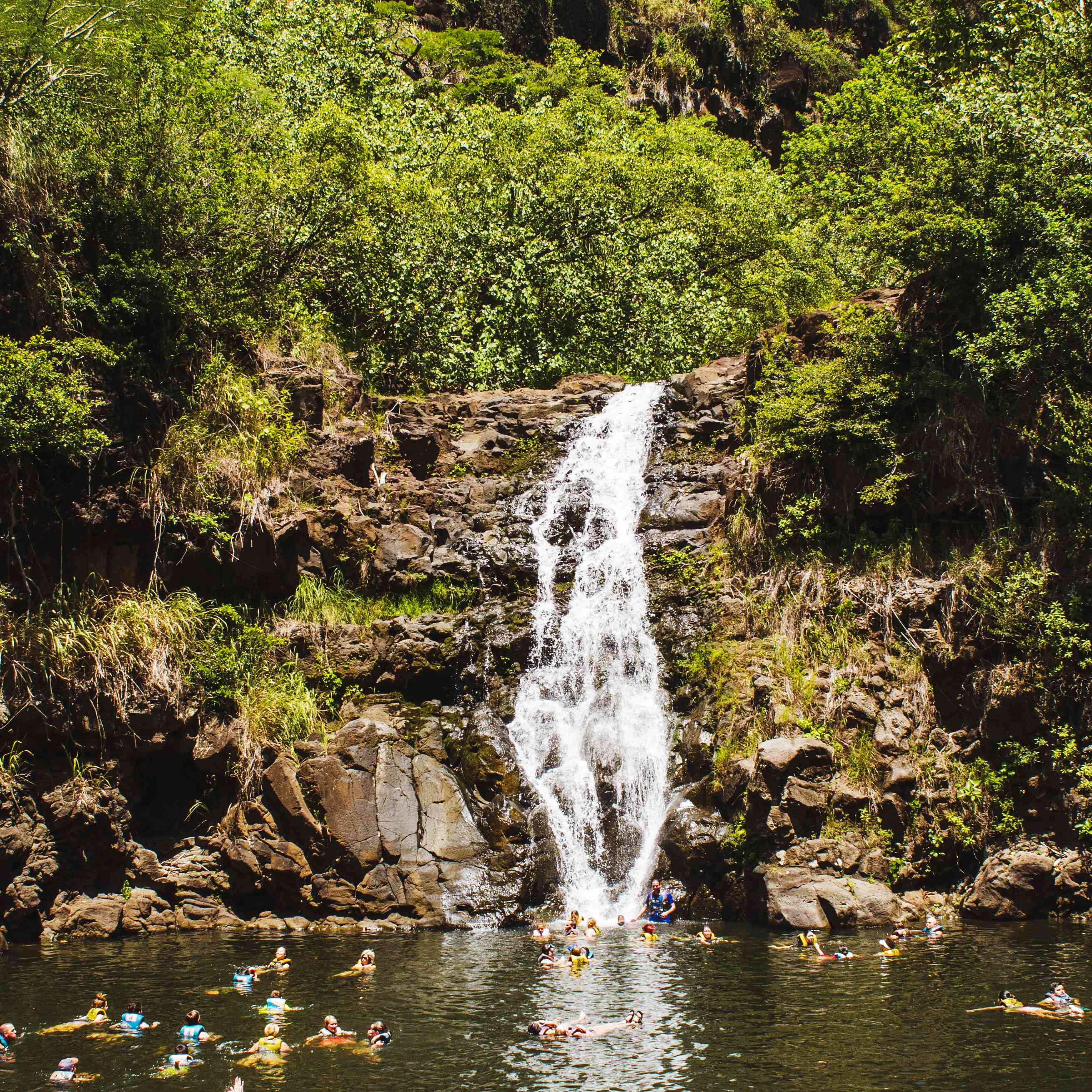 People swimming at Waimea Valley
