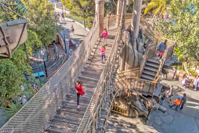 Rope Bridge to Tarzan's Treehouse
