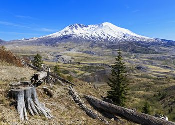 USA, Washington, Mount St. Helens as seen from Johnston Ridge Observatory and damage in landscape from eruption