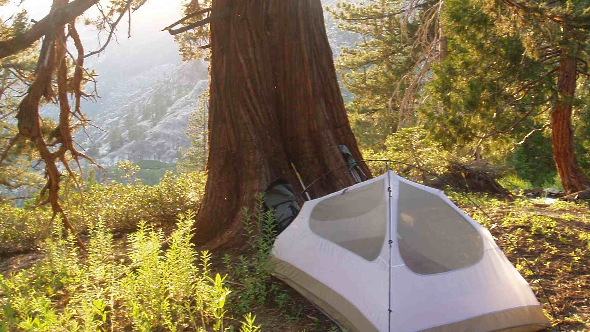 Dispersed Camping In The U S National Forests