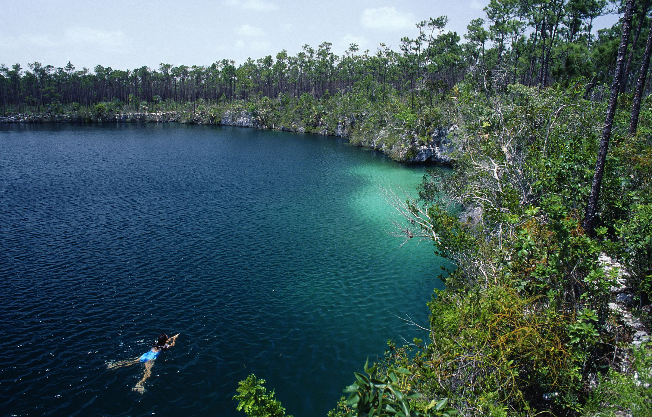 Bahamas, Andros. Woman swimming in an inland blue hole on the island of Andros.