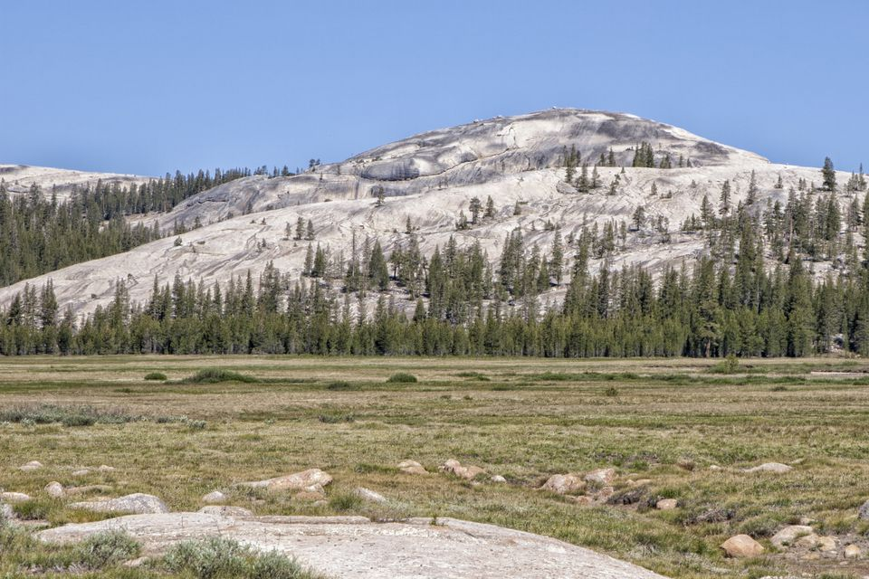 Tuolumne Meadows in Summer