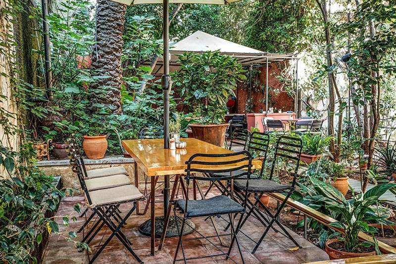 Outdoor wooden table with 8 chairs surrounded by trees and plants at Black Duck Garden in Athen